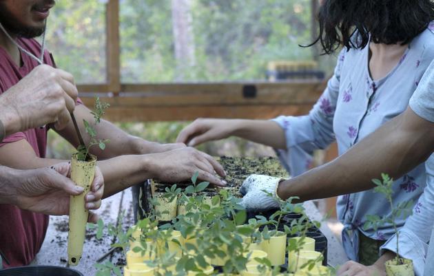 Conservation Stewardship Programs