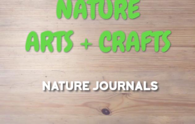 Nature Arts & Crafts: DIY Nature Journals