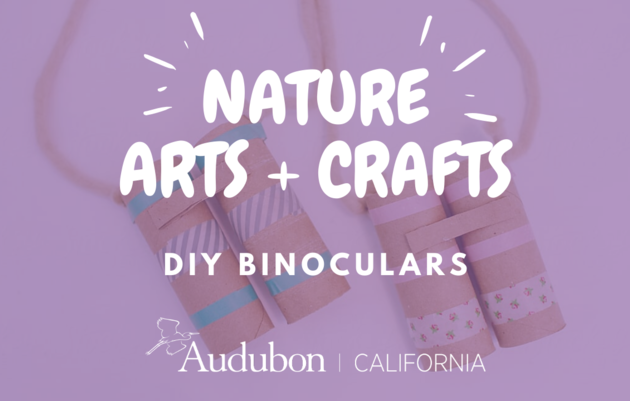 Nature Arts & Crafts: DIY Binoculars