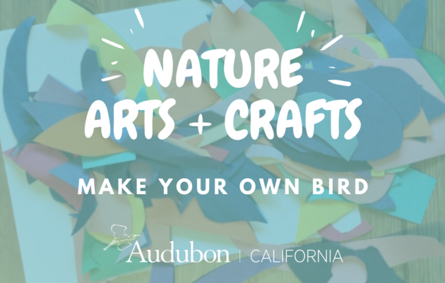 Nature Arts & Crafts: Make your own Bird