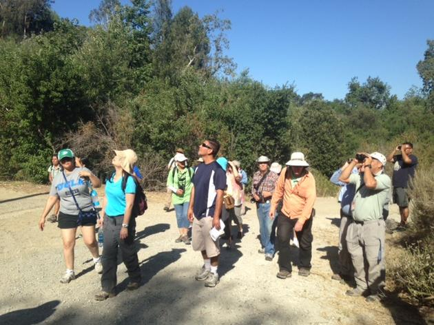 Southland to celebrate second annual Bird LA Day May 7
