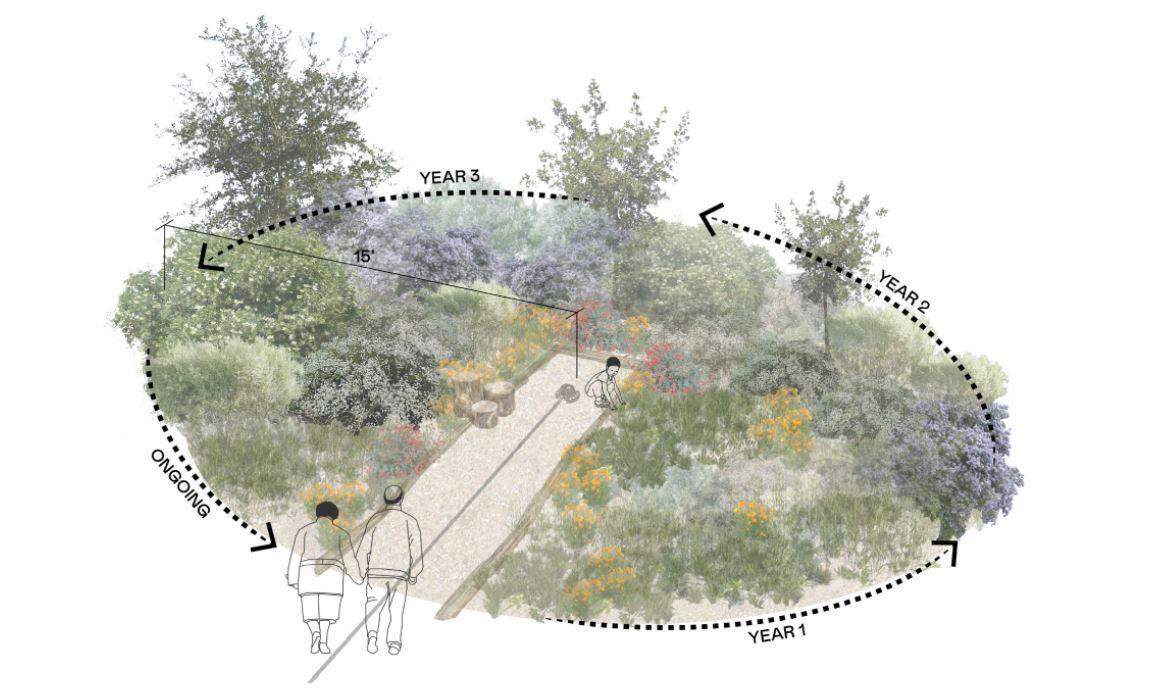 TEST PLOT concept at Elysian park: evolution over time