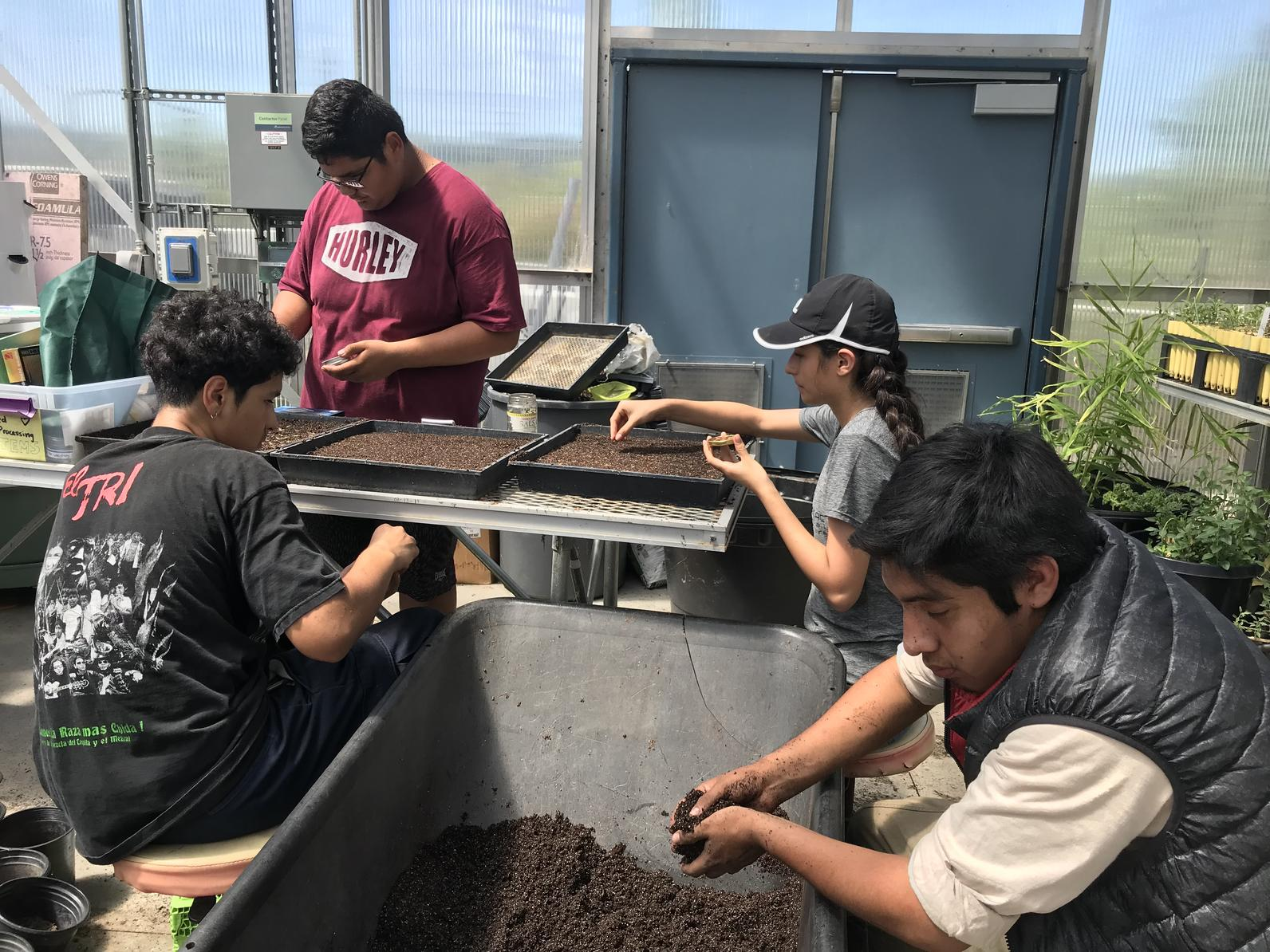 Student interns working in the nursery.