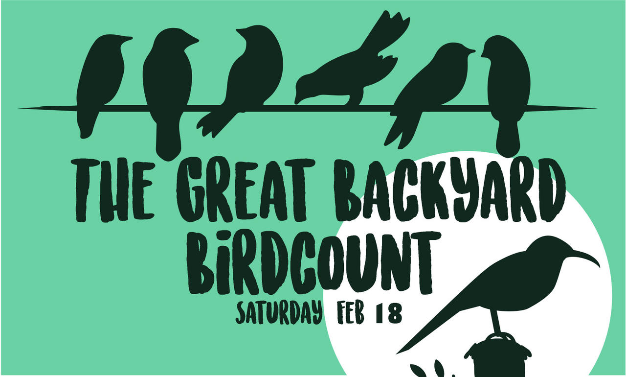 Great Backyard Bird Count | Audubon Center at Debs Park
